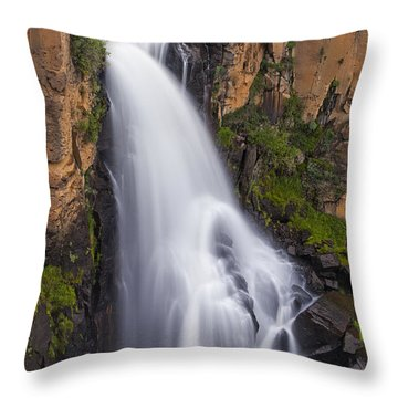 Chasing Waterfalls Throw Pillow