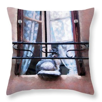 Chat Bleu Dans La Fenetre Rose Throw Pillow