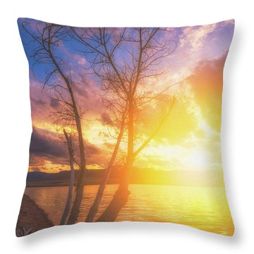 Throw Pillow featuring the photograph Chatfield Lake Sunset by Darren White