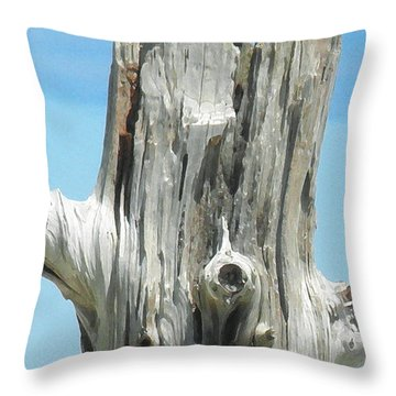 Chatham Driftwood Throw Pillow