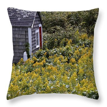 Chatham Shed Throw Pillow