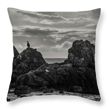 Chatting On Rocks Throw Pillow