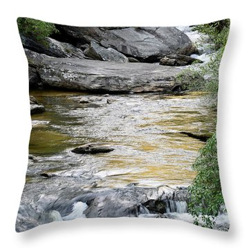 Chattooga River In Sc Throw Pillow by Bruce Gourley