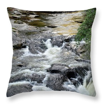 Chattooga River In South Carolina Throw Pillow by Bruce Gourley