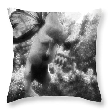 Chazot Soars Throw Pillow by Helyn Broadhurst Cornille