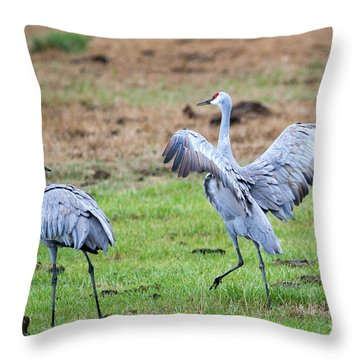 Check The Moves Throw Pillow
