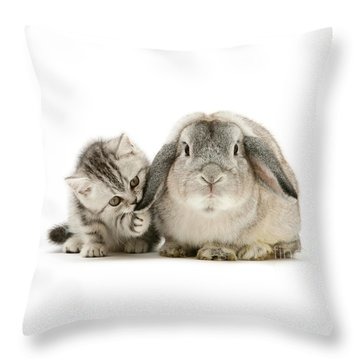 Checking For Grey Hares Throw Pillow