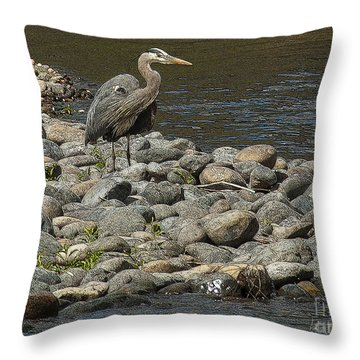 Checking The Menu Throw Pillow
