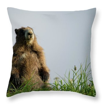 Checking The View Throw Pillow