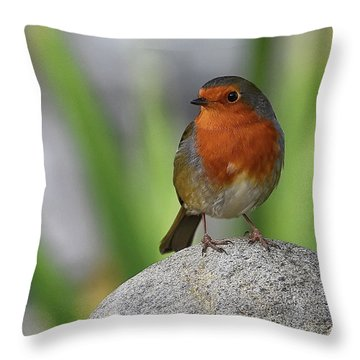 Cheeky Chappy Throw Pillow