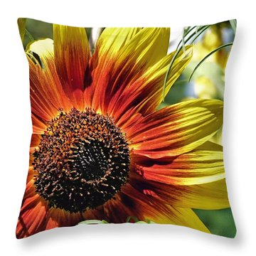 Throw Pillow featuring the photograph Cheerful by Janice Drew
