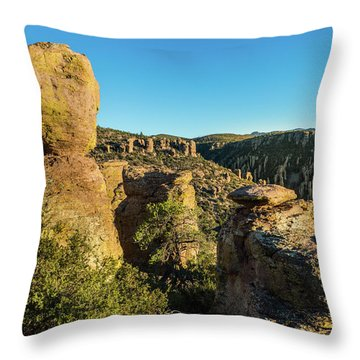 Cheers For Chiricahua Throw Pillow