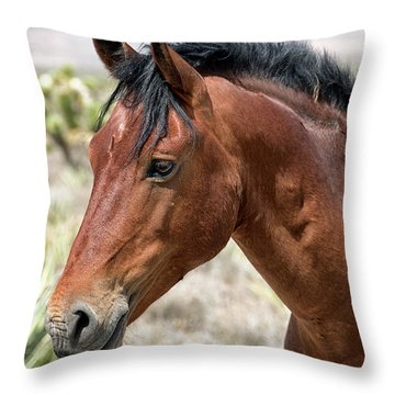 Cheers Where Everybody Knows Your Name Throw Pillow