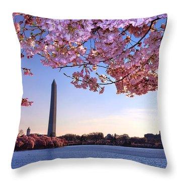 Cheery Cherry Dc Throw Pillow