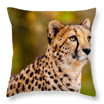 Cheetah In A Forest Throw Pillow