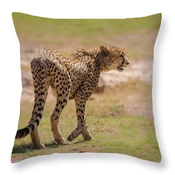 Cheetah Throw Pillow