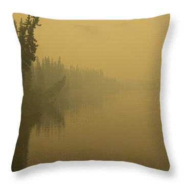 Chena River Throw Pillow by Gary Lengyel
