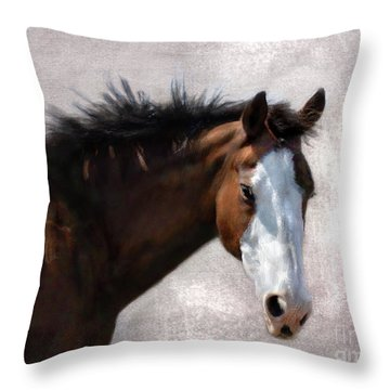 Cherokee Throw Pillow
