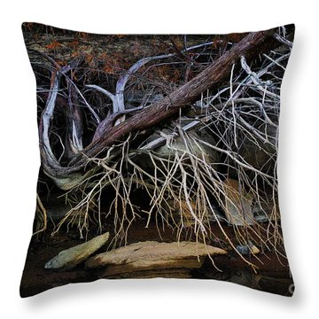 Throw Pillow featuring the photograph Cherokee Lake Abstract by Douglas Stucky