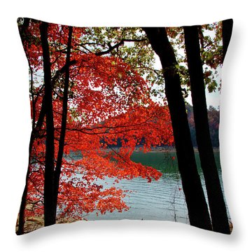 Throw Pillow featuring the photograph Cherokee Lake Color by Douglas Stucky