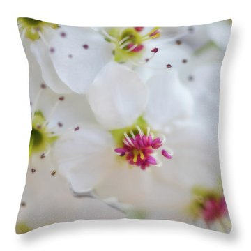 Throw Pillow featuring the photograph Cherry Blooms by Darren White