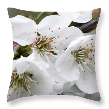 Cherry Blosoms Throw Pillow