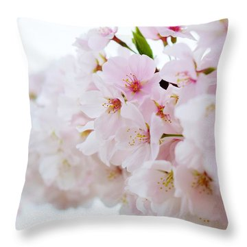 Cherry Blossom Focus Throw Pillow