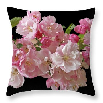 Cherry Blossom On Black Throw Pillow by Gill Billington