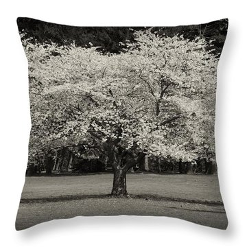 Cherry Blossom Tree - Ocean County Park Throw Pillow