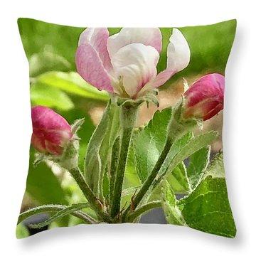 Cherry Blossom Trio Throw Pillow