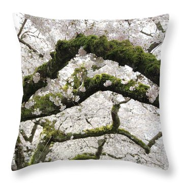 Cherry Blossoms 104 Throw Pillow