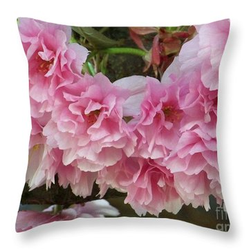 Throw Pillow featuring the photograph Cherry Blossoms 2 by Charles Robinson