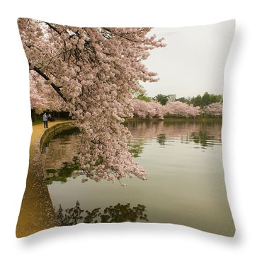 Cherry Blossoms Along The Tidal Basin 8x10 Throw Pillow