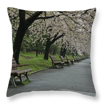 Cherry Blossoms And Benches Throw Pillow