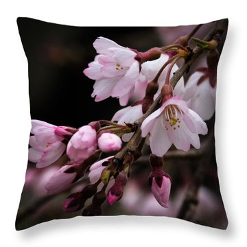 Throw Pillow featuring the photograph Cherry Blossoms by Cathy Donohoue