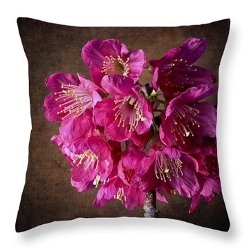 Cherry Blossoms Throw Pillow by Endre Balogh
