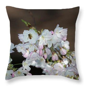 Cherry Blossoms Throw Pillow by Glenn Franco Simmons