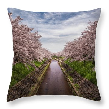 Throw Pillow featuring the photograph Cherry Blossoms In Nara by Rikk Flohr