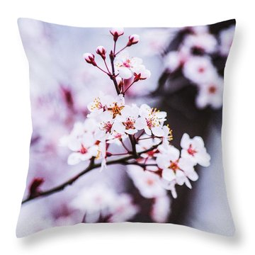 Throw Pillow featuring the photograph Cherry Blossoms by Parker Cunningham