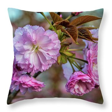 Cherry Blossoms Throw Pillow by Pat Cook