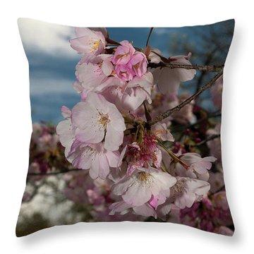 Cherry Blossoms Vertical Throw Pillow