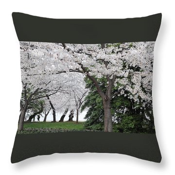 Cherry Blossoms Washington Dc Throw Pillow by Steve Archbold