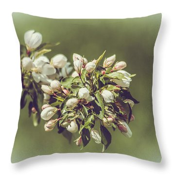 Cherry Blossoms Throw Pillow by Yeates Photography