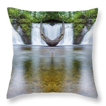 Cherry Creek Falls Reflection Throw Pillow