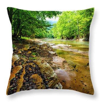 Cherry Falls In Summer Throw Pillow
