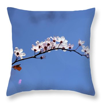 Throw Pillow featuring the photograph Cherry Flowers With Lens Flare by Helga Novelli