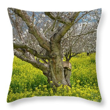 Cherry Orchard 8 Throw Pillow