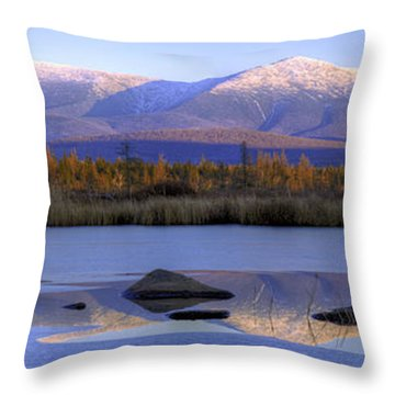 Cherry Pond Reflections Panorama Throw Pillow