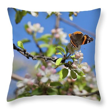 Monarch Butterfly On Cherry Tree Throw Pillow