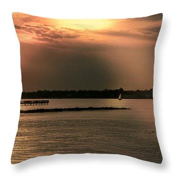 Chesapeake Gold Throw Pillow